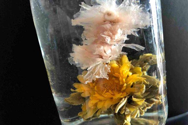 飲み終わった後は、水中花にして飾ってみました
