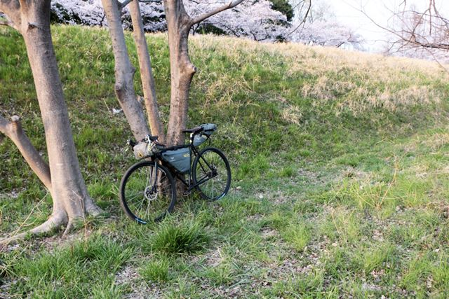 自転車を立てかけておきたいので、木の側にテントを張ることに。ここが今夜の寝床です