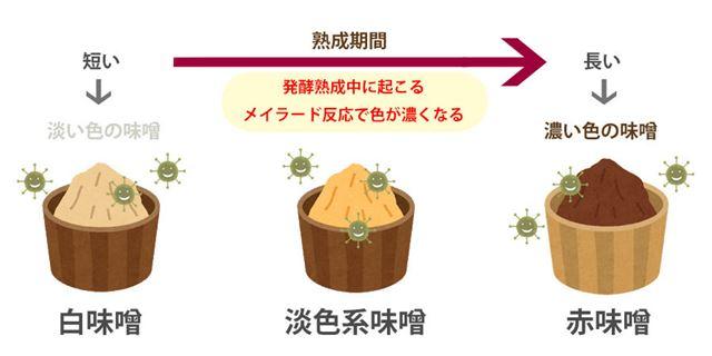 味噌の色と種類