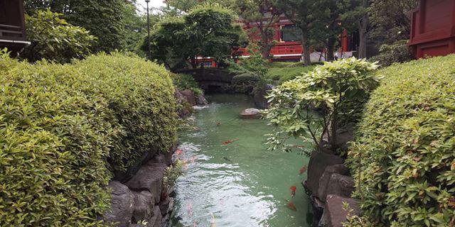 昼間の日本庭園を撮影。薄曇りだったせいもあるが、鮮やかさよりも目にやさしい穏やかな発色傾向だ