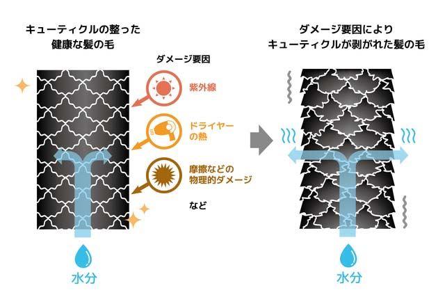 キューティクルがはがれる原因は、紫外線、ドライヤーの熱、摩擦など