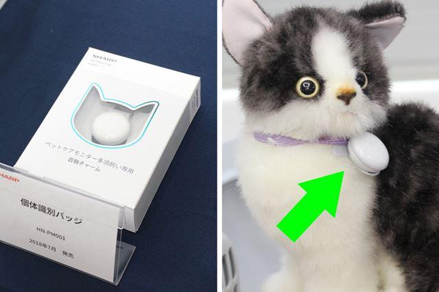 個体識別バッヂを取り付けて、最大3匹までの猫をアプリに登録できる