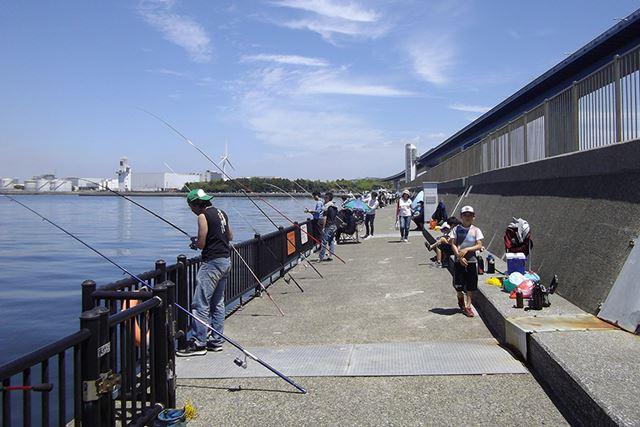 釣り専用の防波堤は早朝から人でにぎわっている