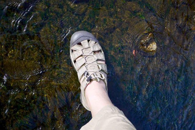 なので、水辺だろうとおかまいなく歩いていけるのがいいですね