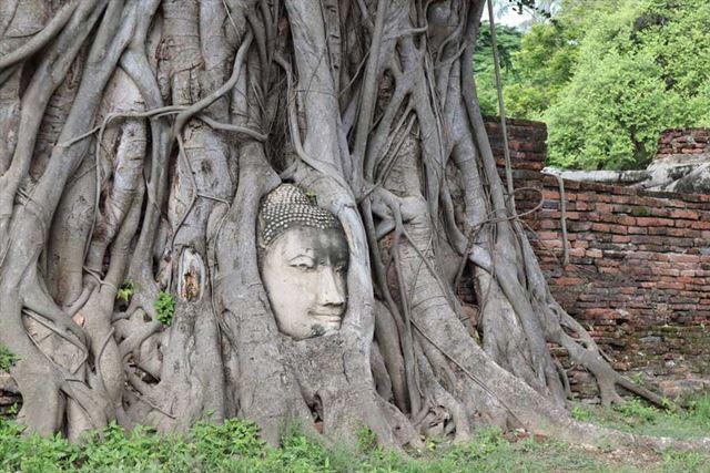 タイの世界遺産「アユタヤ遺跡」をEOS Kiss Mで撮影