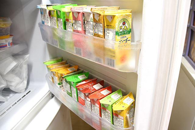 一般的な冷蔵庫の冷凍室に入れてみたが、半日過ぎても凍らなかった。丸1日入れておけば、しっかりと凍る