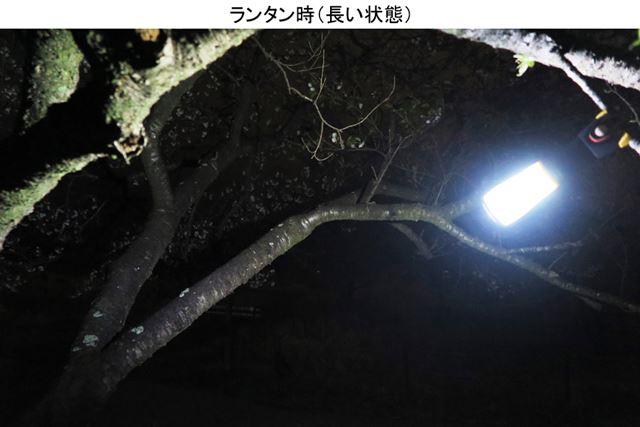 通常のランタンとして使う状態では、下方への光は少ないが、周囲の枝にも光が届いている