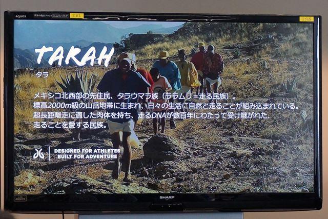 「TARAH」はメキシコの先住民族のタラウマラ族がとった