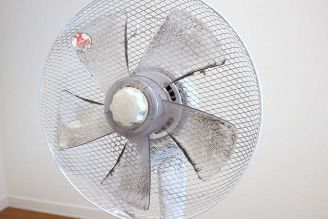 「扇風機って、時計回りなんだな」と強く感じさせてくれるホコリの蓄積