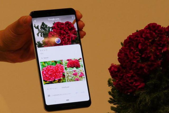 花を撮影すると、その名称を調べてくれた。こういった機能は、機械学習により今後精度の向上が見込まれる