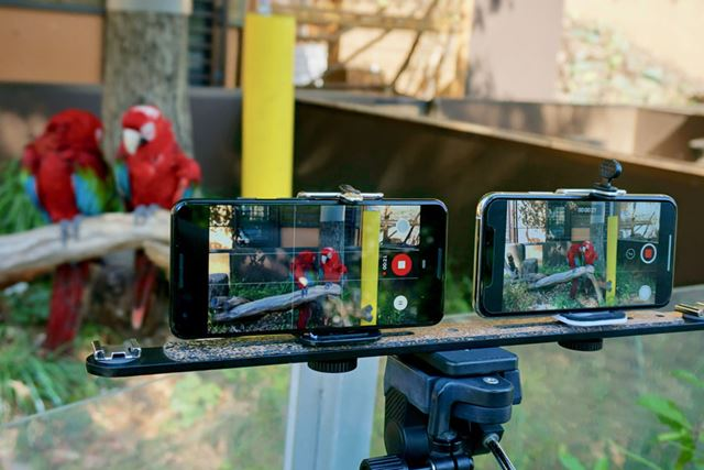 「Pixel 3」と「iPhone XS」の動画性能を徹底比較してみました