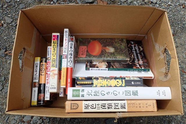 Mさんに持ってきてもらったキノコ図鑑。写真集として、読み物としてもおもしろい本ばかり