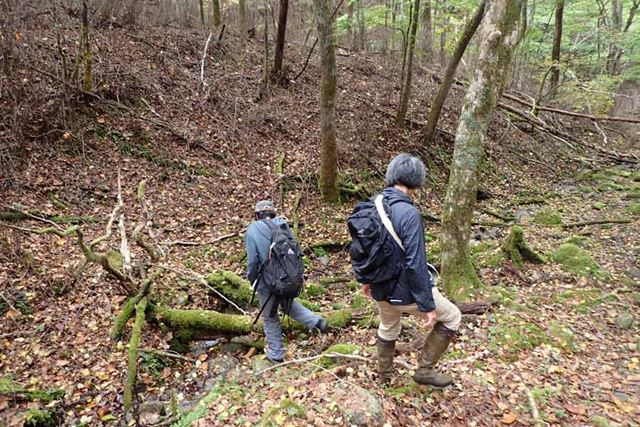 普段は山登りを一切しないけれど、そこにキノコという目的さえあれば毎週でも登るという友人