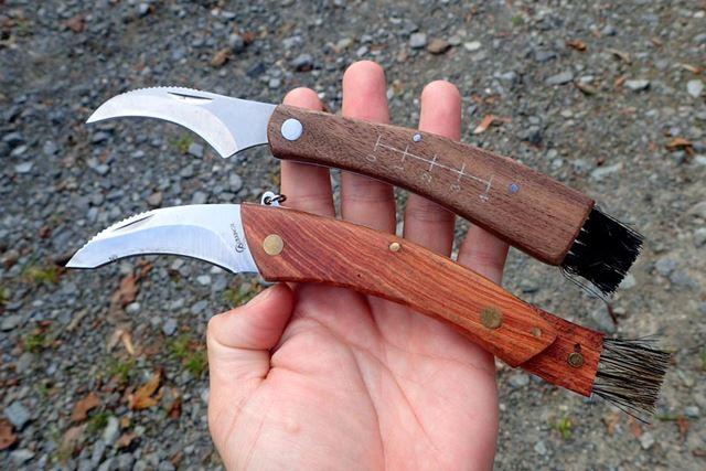 丸まった専用の刃と、キノコの汚れを落とすブラシがついている。いいなこれ