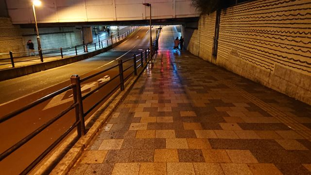 薄暗い高架下を手持ちで歩きながら撮影。条件が厳しいため暗めの仕上がりだが、ノイズは目立たない