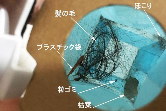 ちっと見えづらい&汚くて申し訳ないですが、ほこり、髪の毛、プラスチック袋、粒ゴミ、枯葉……