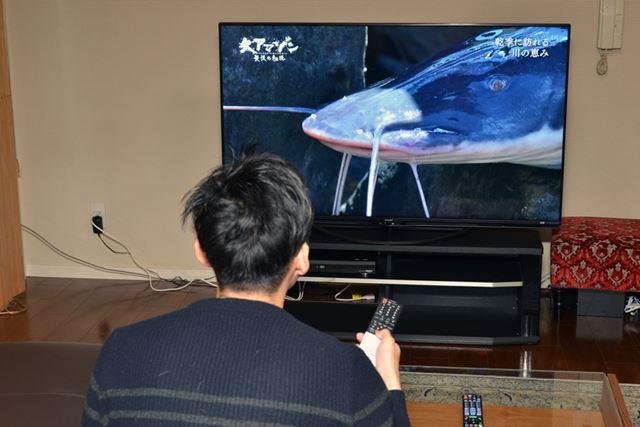 価格.comマガジン編集部に新4K衛星放送チューナー内蔵テレビ3台を持ち込んでテスト