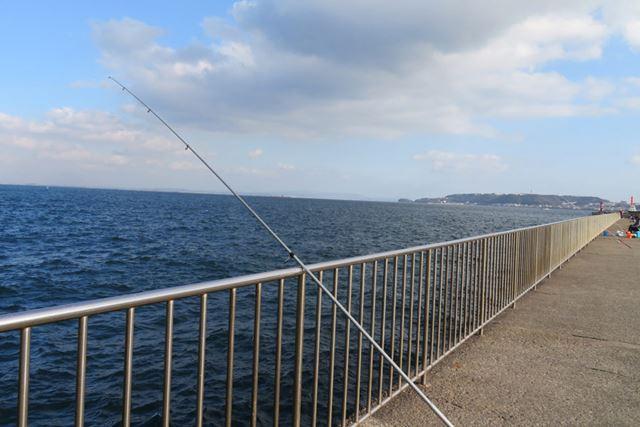 柵のある釣り場なら、子どもと一緒でも安心して楽しめる