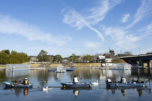 ボート釣りの様子。時期によっては、白鳥が泳いでいることも