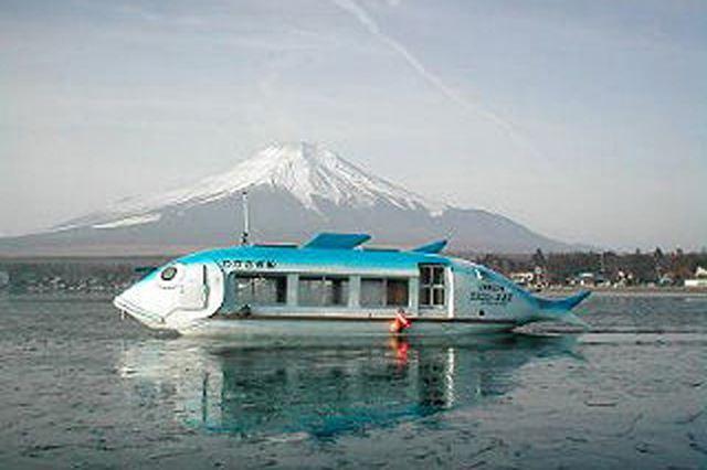 さまざまなタイプのドーム船が利用できる