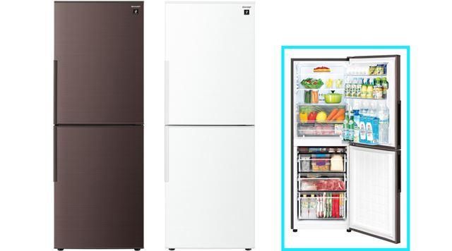 レイアウトは上から「冷蔵室」「冷凍室」