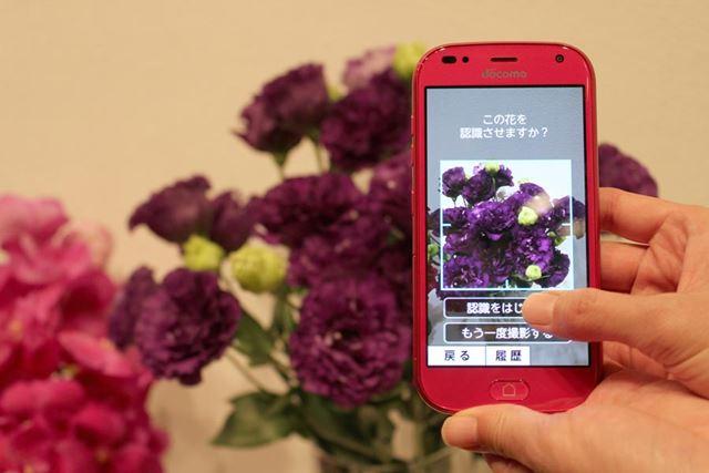 プリインストールされるアプリ「花ノート」は、搭載される撮影した花の画像からAIが種類を特定する