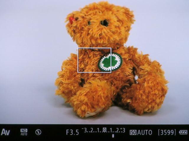 ファインダー内の表示を撮影した画像。非常に高精細でクリアーなファインダーだ