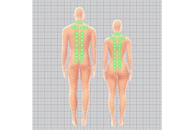 体形ごとに異なる指圧点を検索。症状に合わせて的確に刺激する