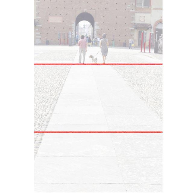 写真3  1/500秒、F/11、ISO 400、使用レンズ/・AF-S DX NIKKOR 18-55mm f/3.5-5.6G VR II