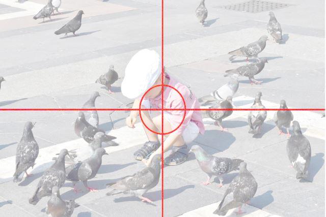 写真12 1/800秒、F/14、ISO1000、使用レンズ/ AF-S DX NIKKOR 18-55mm f/3.5-5.6G VR II