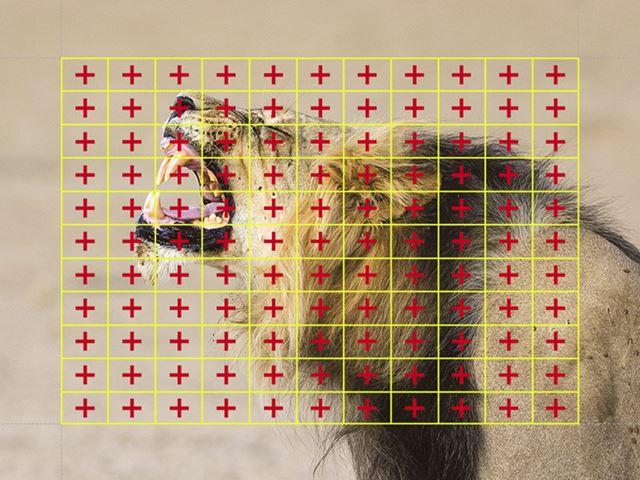 像面位相差AF は121点すべてが縦線/横線のクロス検出に対応