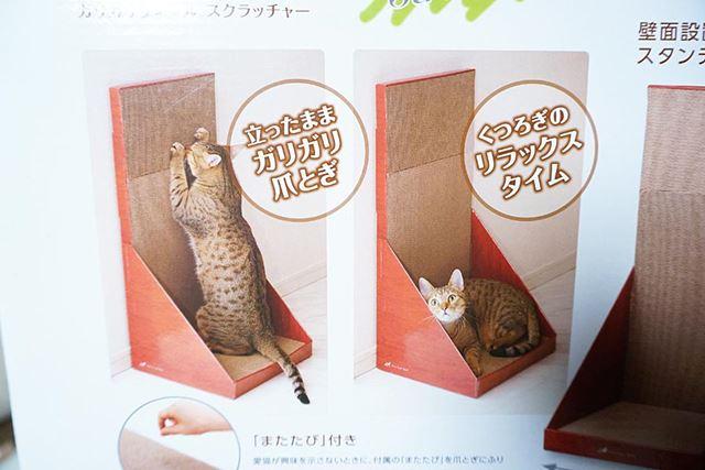 パッケージにはこんな写真が! はたしてこのようにしてくれるか不安になるところです