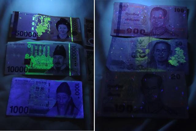 どの国の紙幣がどうなっているのか、あらかじめ確かめてから行くといいでしょう