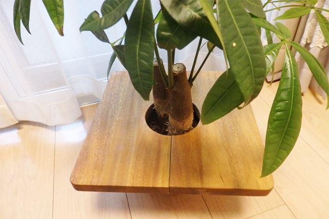 板がプランターの上に引っかかってテーブル状に!